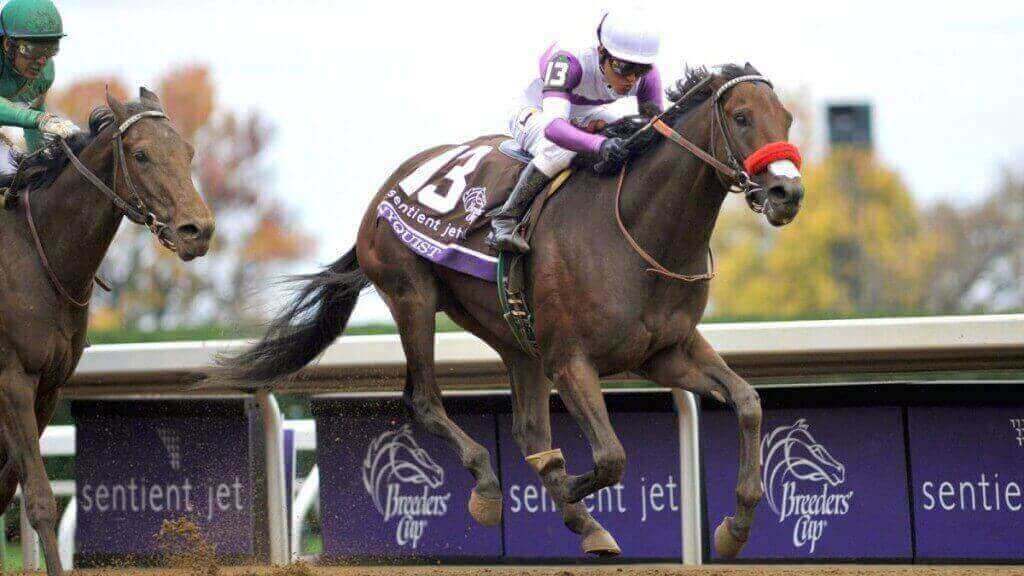 Nyquist, the two-year-old champion Thoroughbred is the overwhelming favorite to win the Kentucky Derby.