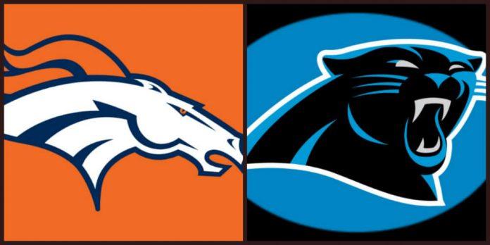 NFL Predictions: Denver Broncos and Carolina Panthers in Super Bowl rematch