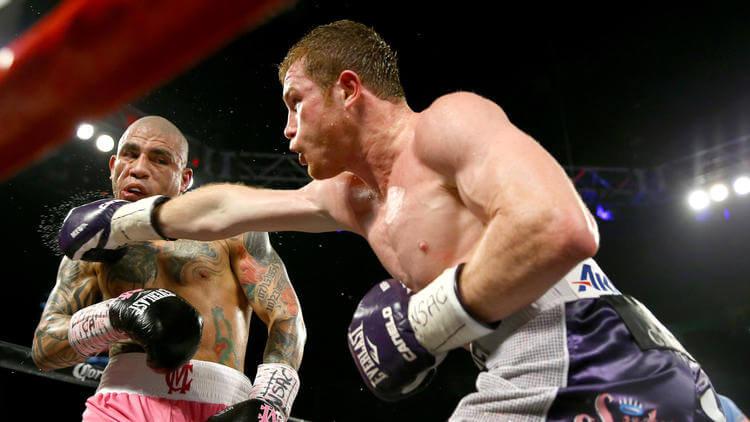 Canelo Alvarez WBC fight odds