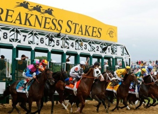 Preakness Picks and Preakness Post Positions for the 2016 Race
