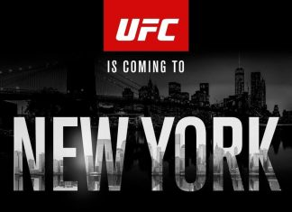 UFC 205 Odds and Early Predictions