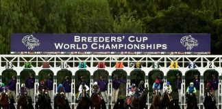 2016 Breeder's Cup Odds