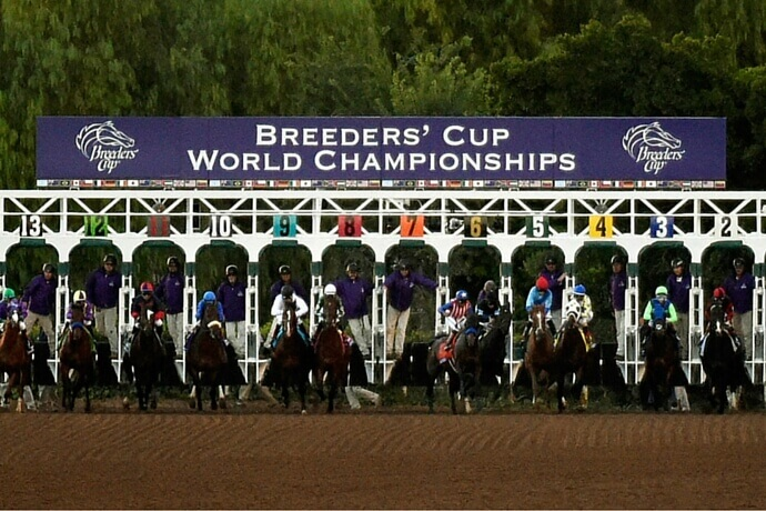 Breeders Cup Distaff Race Preview And Odds Bigonsports