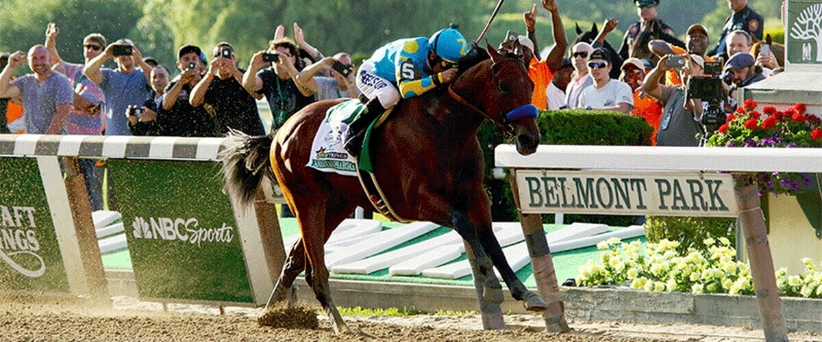 american football tipster belmont racing picks